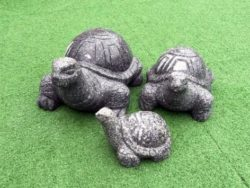 Granite Turtle