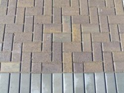 STANDARD PAVING BRICK MULTI TAN