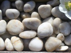 WHITE POLISHED COBBLES 4-6CM