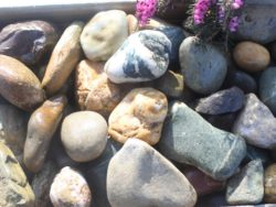 MINI BEACH COBBLE