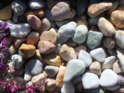 TUMBLED FOUR COLOUR MIX PEBBLES